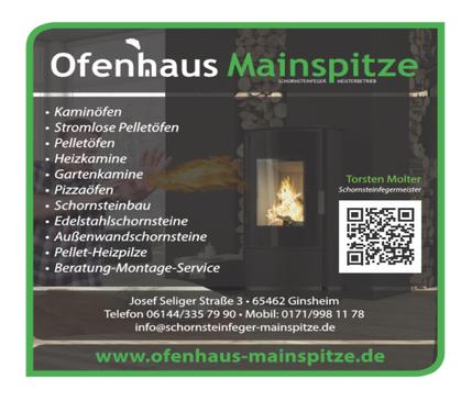 Kaminofen und Edelstahlschornstein kaufen Hochheim Hofheim Nordenstadt Wallau günstig ofenstudio ofenhaus