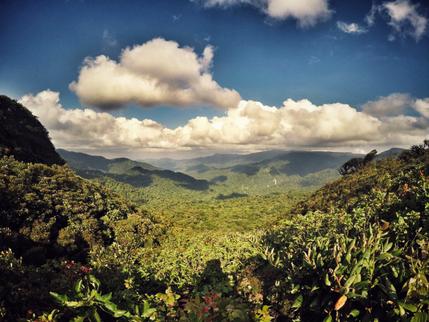 Lookout inside the Cloud Forest, Santa Elena