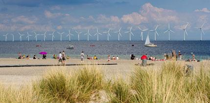 Badewetter am Strand von Amager in Kopenhagen. Foto: VisitDenmark/Thomas Rousing.