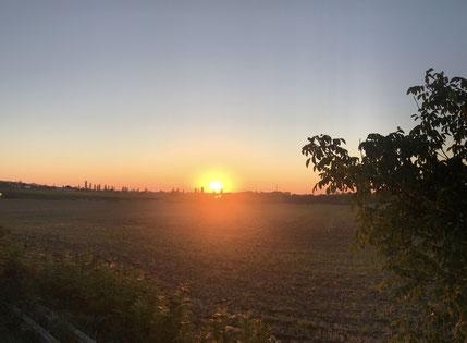 Sonne ist Leben