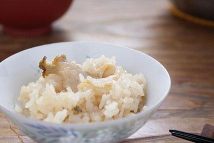 天たつの炊き込みご飯の素「天然あわび飯の素」で温かなご家族の食卓を