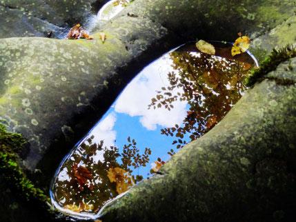 Ein spiegelnder Herbstabdruck im Thüringer Schiefergebirge
