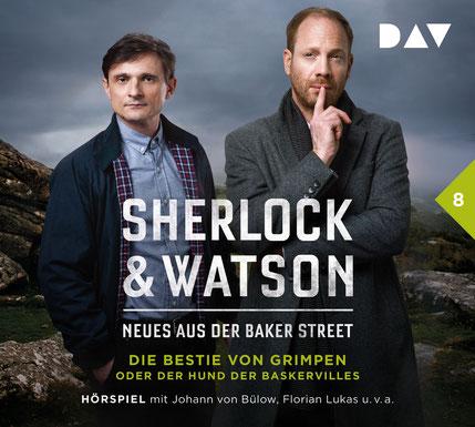 CD-Cover Sherlock & Watson Fall 8