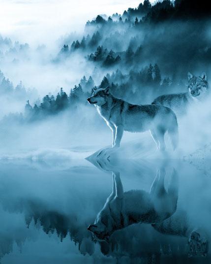 Wolf mythologie mythos wölfe geschichte kultur kulturen mensch menschen magie wald schnee wasser see