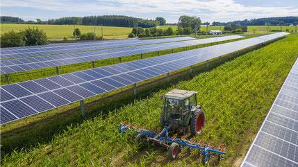 Die ÖKO-HAUS GmbH hat erstmals eine Agrophotovoltaik-Anlage errichtet. Die 749 kWp-Anlage der Agro-Photovoltaik-GbR befindet sich im oberbayerischen Althegnenberg.