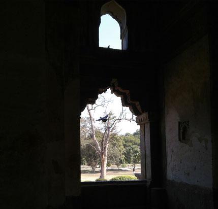 Indisches altes Bauwerk, Dehli, Vogel fliegt auf, © ErdbeerWulf Gbr
