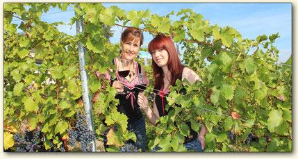 Weinprobe auf dem steilsten Weinberg Brandenburgs am Grossräschener See