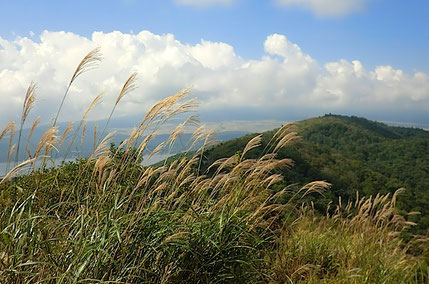 平尾山から大平山