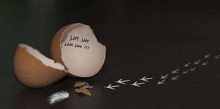 Baufinanzierung umschulden und günstigere Zinsen sichern