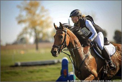 Sportpferdefotografie TINA KELLER - Reiter Alina Dibowski