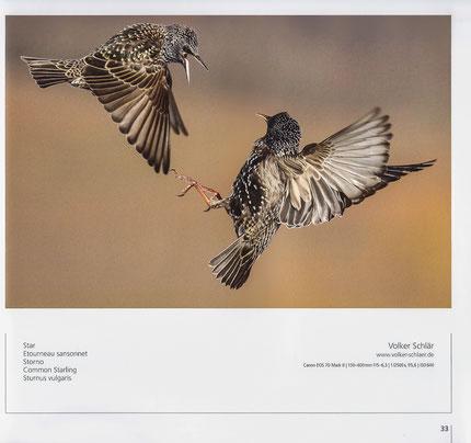 Bildband zum Fotowettbewerb 2015, Seite 33