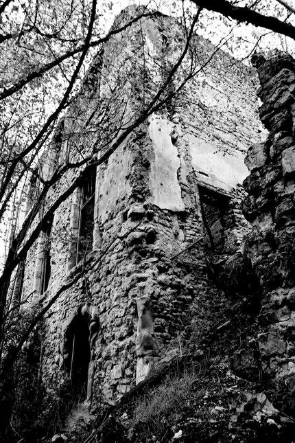 Schloss Bübingen