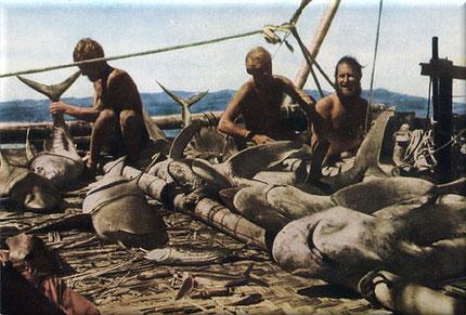 Pesca sul Kon-Tiki