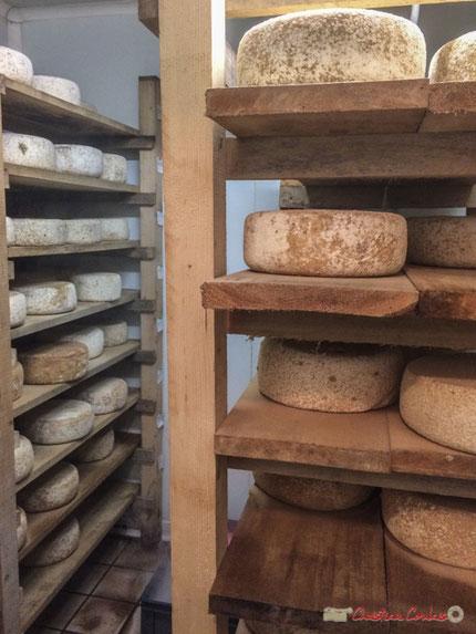 Tome de brebis biologique, Domaine de Montagne, Michaël  Bonnaud, producteur, 457 Montagne, Capian, Gironde