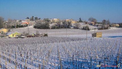 Vignoble et hameau de Mons, commune de Cénac sous la neige. 25 janvier 2007