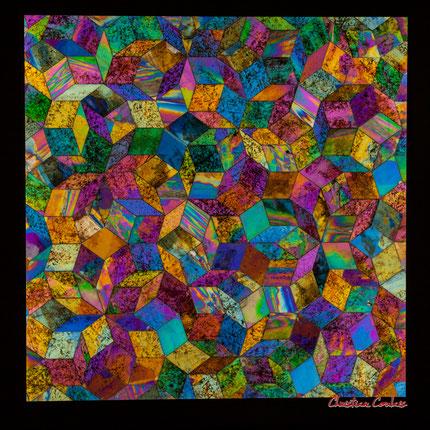 MicaPenrose, Léa BARBAZANGES, artiste plasticienne, Sylvain RAVY, chercheur au CNRS. Domaine de Chaumont-sur-Loire. Lundi 13 juillet 2020. Photographie © Christian Coulais