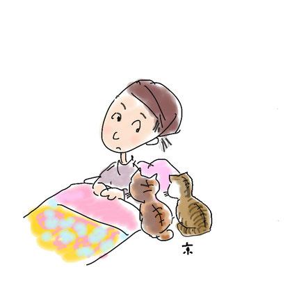 おかみのらくがき絵日記「猫の目覚まし」