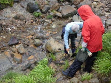 NPO法人須川の自然を考える会 登山道整備の様子