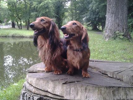 Zu Besuch bei Ulli. v.l. Benny mit seinen kleinen Bruder.