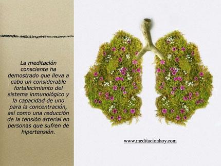 Meditación es Salud