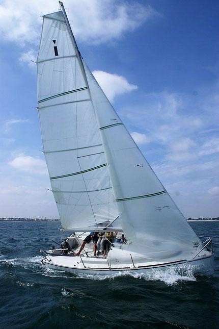 Ikone 5.50 mit Slup-Takelung - ein echtes Sportsboat