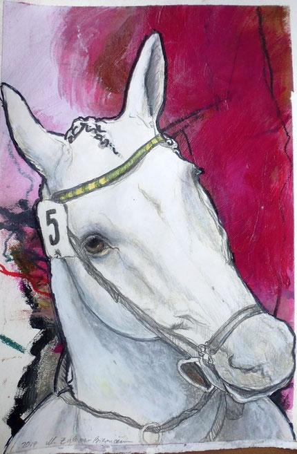 Bild Pferdekopf