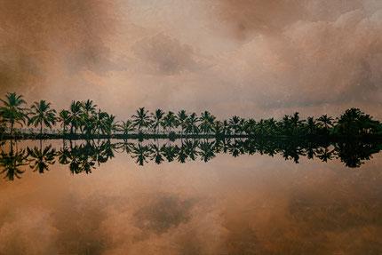 Coucher de soleil sur les Backwaters, Kerala, India