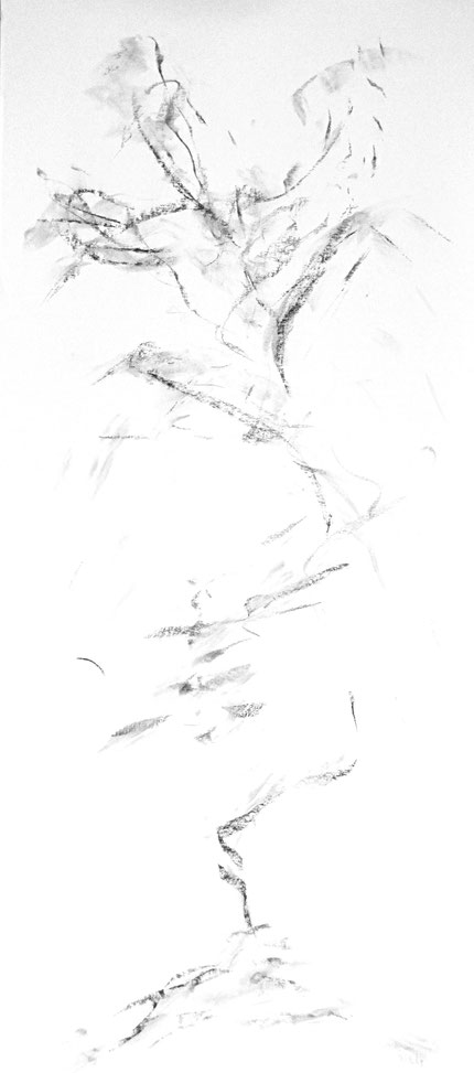 "up in smoke, 2005, charcoal on paper, 53"" X 20"""