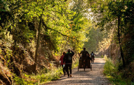 Hiking and Biking in The Ambroz Valley