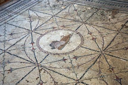 Visit Roman Mosaics in Risan