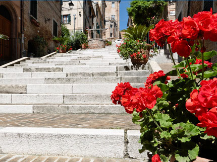The steps of Corinaldo
