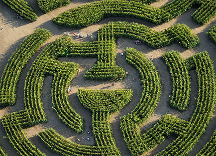 Le Labyrinthe - Best things to do in Durbuy