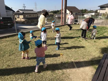 今日で10月も終わりですね。少しずつ寒くなってきましたが、子どもたちは元気に外で遊んでいます。ひかりぐみさんとそらぐみさんは、しっぽとりをしました。