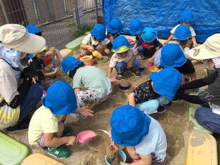 ほし組さんも、「何を作っているの?」と尋ねると「アイス!」と答える子が多かったです。まだまだ暑いので、アイス屋さんで大賑わい!あちらこちらでアイスがたくさん作られ、大きなボリュームのあるアイスも出来ておいしそうでしたよ!砂がひんやりして、気持ちよかったね!
