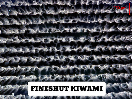 Surface of Fineshut KIWAMI