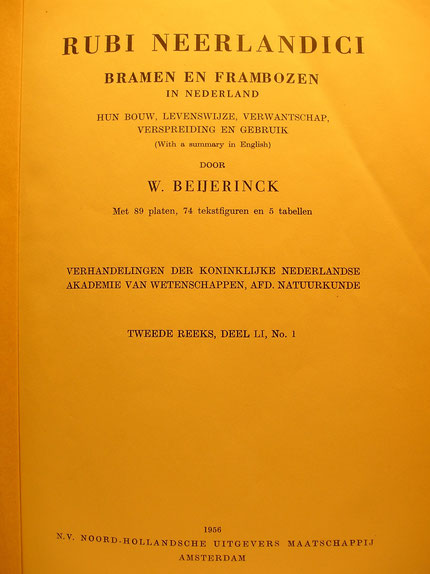 Titelblad Rubi Neerlandici  W. Beijerinck