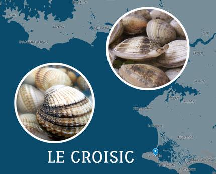Coques et palourdes L'Estran du Croisic