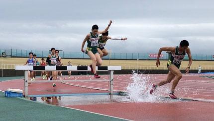 中越選手権大会 一般女子100mH決勝 (2014.4.27)