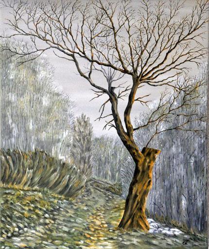 Ölbild von einem alten Eßkastanienbaum im Winter