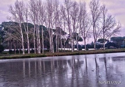 foto stile fantasy - lago