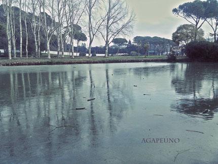 foto stile fantasy - Villa Ada Roma
