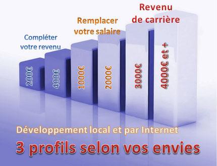 Développement local et par Internet, 3 profils selon vos envies