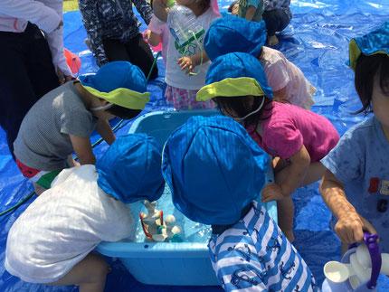 みんな、楽しそうに水に触れて遊んでいました。水って気持ちいいね !