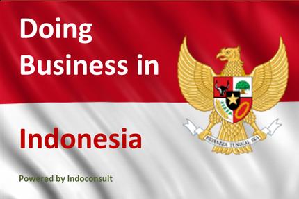 Grundlagen für den Markteinstieg in Indonesien - Indoconsult