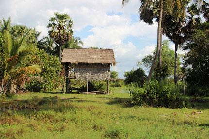 Maison sur pilotis dans la campagne proche de Siem Reap