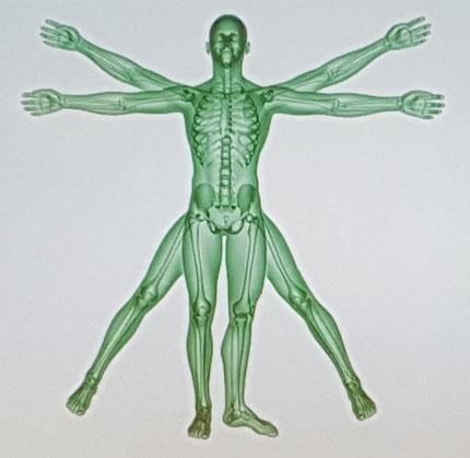 Gesundheitscheck;  Scan; Messen; Vital; Stress; Gesundheit; Vitamine, Körpersysteme; Immunsystem; ADHS; Stress; regulieren; Management; sanieren; Coaching;  entgiften, Schwermetalle ausleiten; ADHS; entfetten, entschlacken, entsäuern; Wohlbefinden