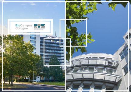 BioCampus und RTZ - Technologie-Schmieden in Köln