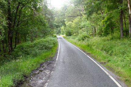 """""""Single road track"""" zwischen Moidart und Ardnamurchan"""
