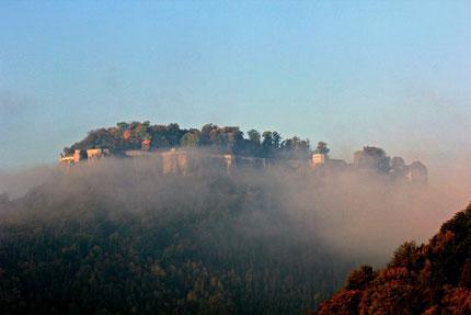 """Die Festung """"Königstein"""" im Morgennebel hoch über der Kleinstadt."""