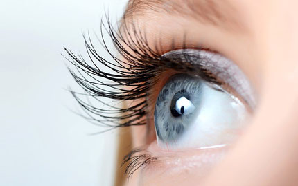 Auge, Wimpern, Augenlid, blaue Augen, fokussierter Blick
